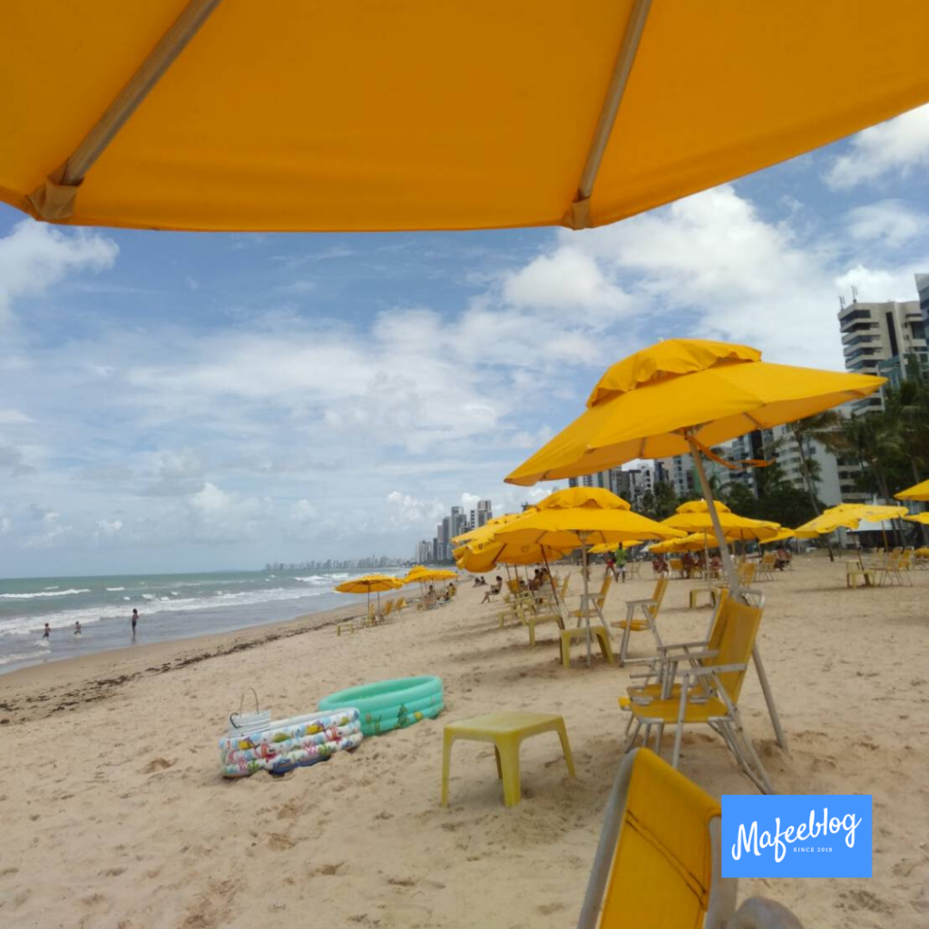~ Tourist spots ~ Recommended spots in Recife, Brazil